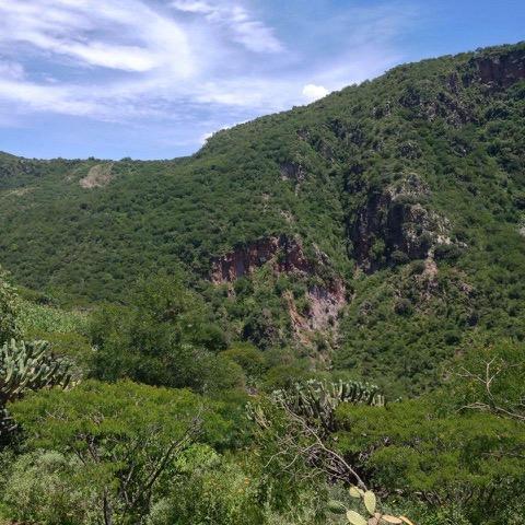 i3 presents: Guided nature walk with Emma Marris at Vía Orgánica and La Joya